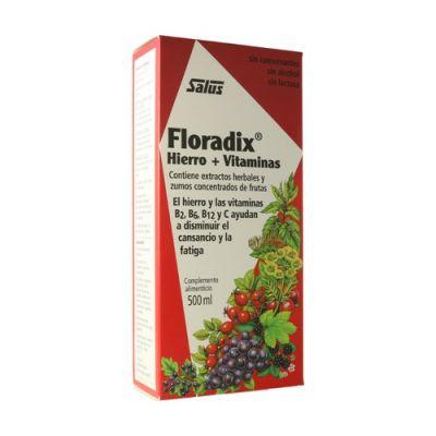 Floradix Jarabe Hierro 500ml