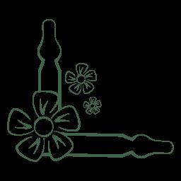 Producto Ampollas